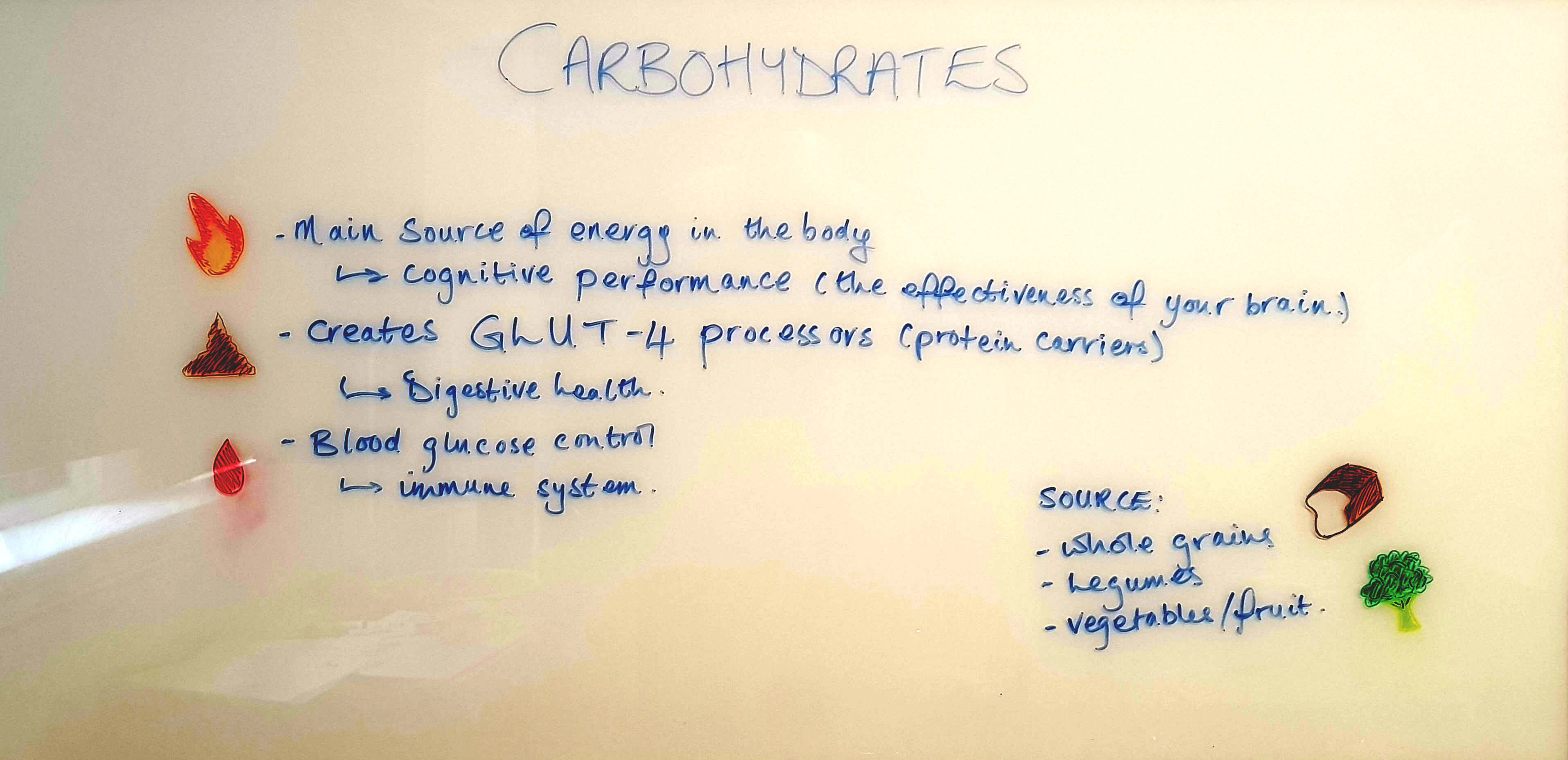 Carbohydrates are the main source of energy in the body and creates glut - 4