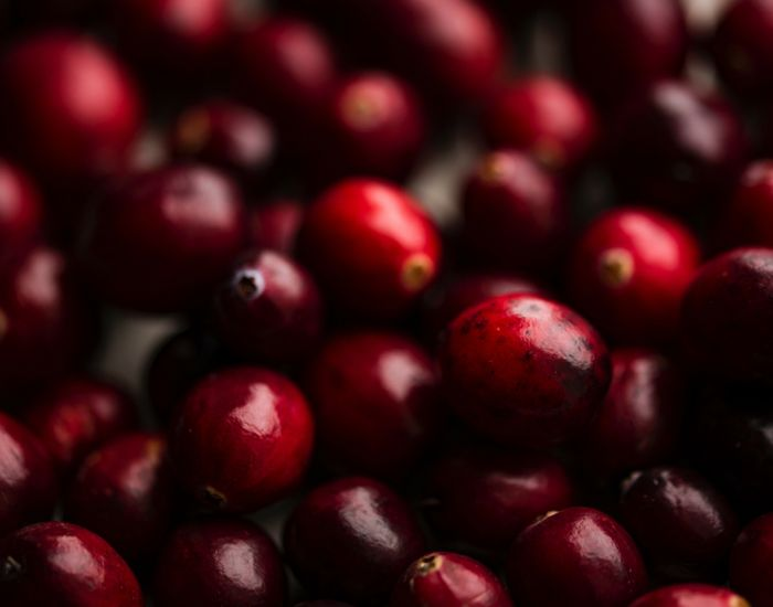 Cranberry extract can help with UTI treatment