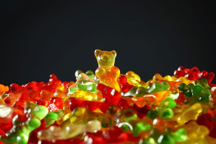 bear-bears-candy-55825-blog