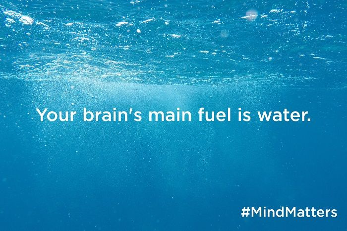 Your brain's main fuel is water