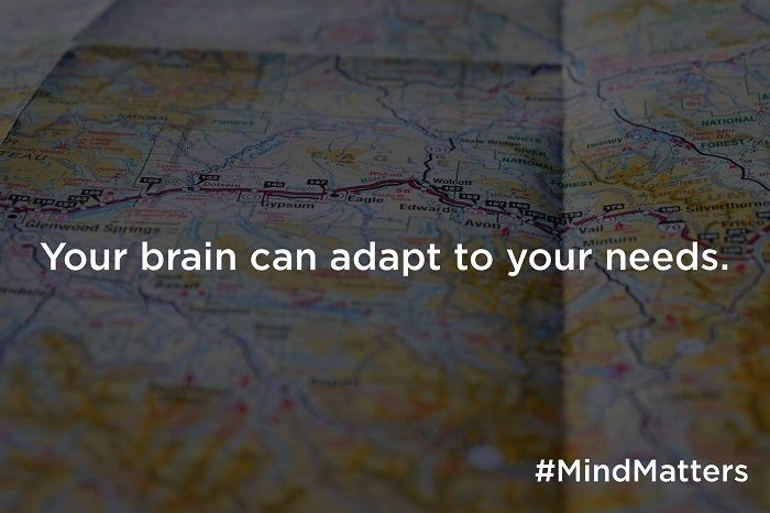 Your brain can adapt to your needs