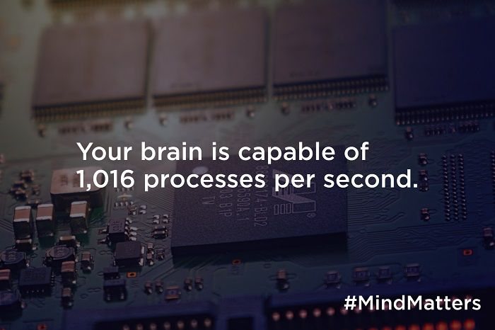 Your brain is capable of 1,016 processes per second
