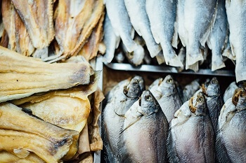 Oily fish such as salmon are great for your brain