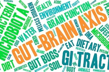 The concept of the 'gut-brain axis' explains how our mind and bowels are linked.