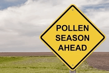 "Yellow diamond danger sign reading ""pollen season ahead"""