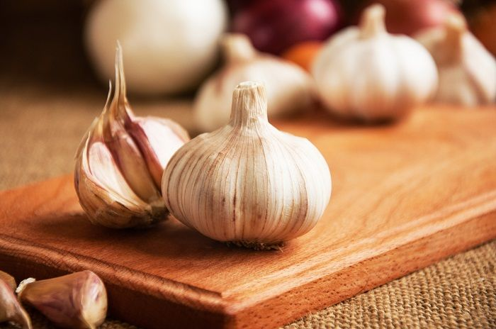 Garlic is good for your gut