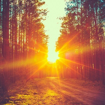 Sunlight - one of the potential triggers of skin allergies